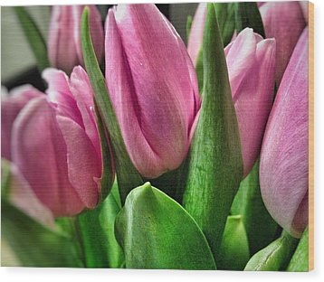 Wood Print featuring the photograph Tulip143 by Olivier Calas