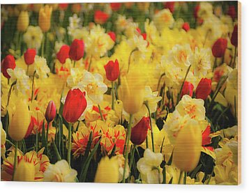 Tulips And Daffodils Wood Print by Tamyra Ayles