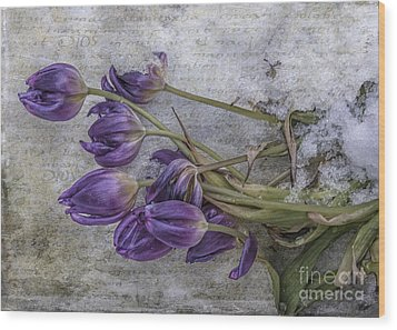 Tulips Frozen Wood Print by Terry Rowe