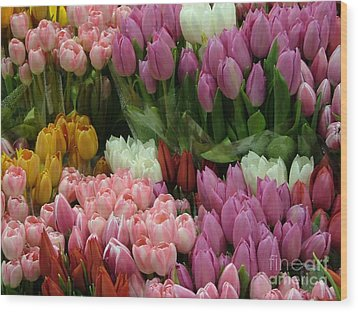 Wood Print featuring the photograph Tulips Galore by Terri Thompson