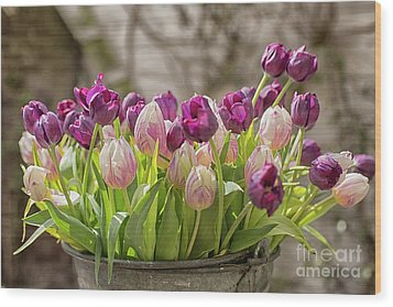 Wood Print featuring the photograph Tulips In A Bucket by Patricia Hofmeester