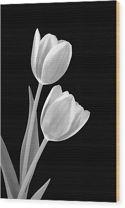 Tulips In Black And White Wood Print