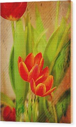 Tulips In Harmony Wood Print