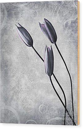 Tulips Wood Print by Jacky Gerritsen