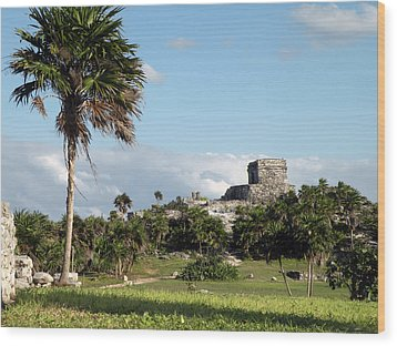 Wood Print featuring the photograph Tulum Mexico by Dianne Levy