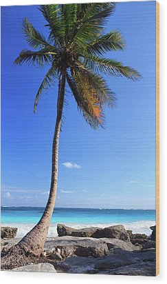 Tulum Mexico Single Tree On Beach Wood Print by Maria Swärd