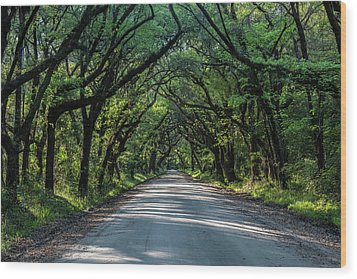Wood Print featuring the photograph Tunnel On Botany Bay by Jon Glaser