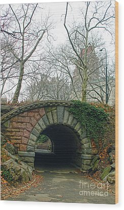 Tunnel On Pathway Wood Print