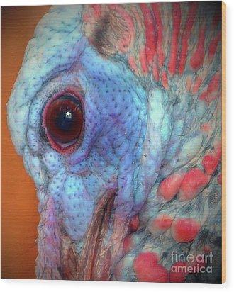 Turkey Head Shot Wood Print by Kim Pate