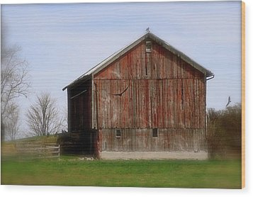 Turkey Vultures Hovering Around The Barn Wood Print