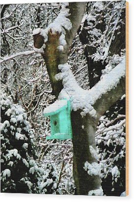 Turquoise Birdhouse In Winter Wood Print by Susan Savad