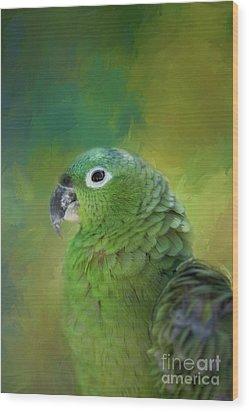 Turquoise-fronted Amazon Wood Print