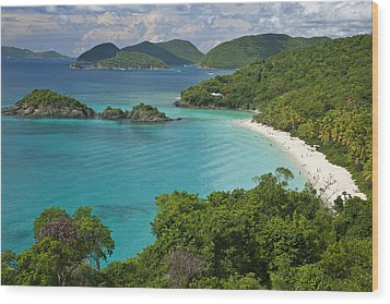Turquoise Water At Trunk Bay, St. John Wood Print by Michael Melford