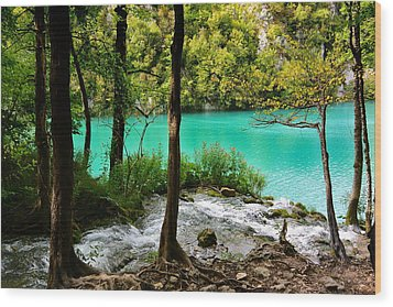 Turquoise Waters Of Milanovac Lake Wood Print by Two Small Potatoes