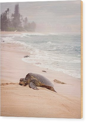 Wood Print featuring the photograph Turtle Beach by Heather Applegate