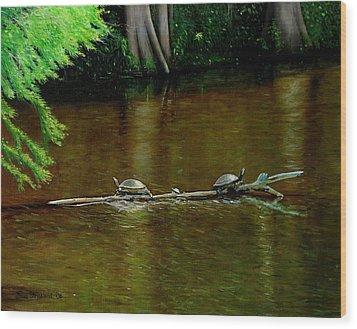 Turtle Log Spa Wood Print by Doug Strickland
