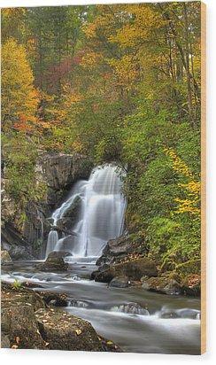 Turtletown Creek Falls Wood Print by Debra and Dave Vanderlaan