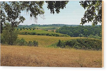 Wood Print featuring the photograph Tuscan Country by Valentino Visentini
