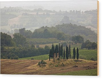 Wood Print featuring the photograph Tuscan Landscape by Stefan Nielsen