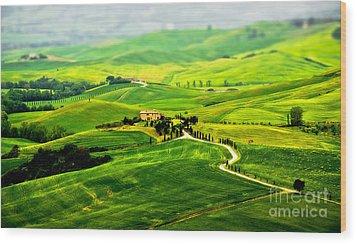 Tuscany S Green Scapes Wood Print by Alessandro Giorgi Art Photography