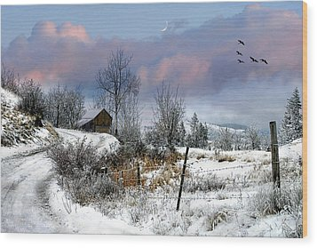 Twain's Barn Wood Print by Ed Hall