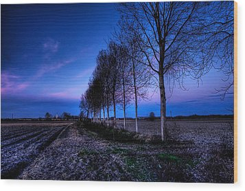Twilight And Trees Wood Print