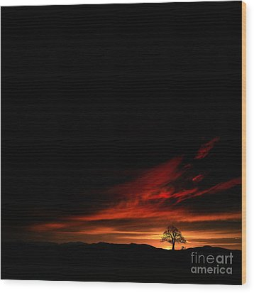 Twilight Glow Wood Print