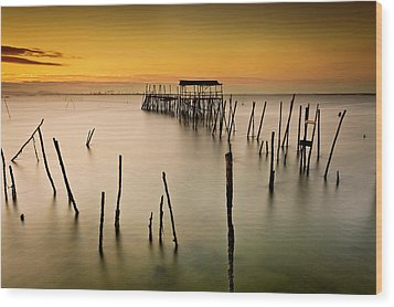Wood Print featuring the photograph Twilight by Jorge Maia