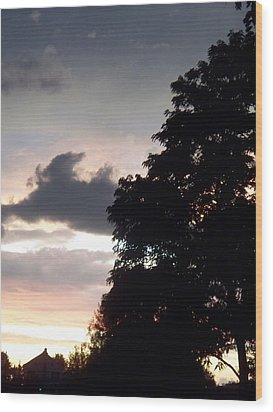 Twilight Landscape Wood Print by Eric  Schiabor
