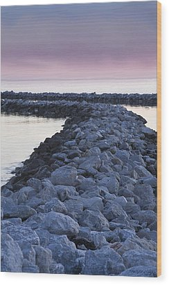 Twilight Of The Day Wood Print by Shelly Stallings
