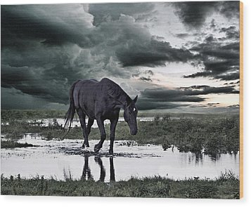 Twilight Of The Gods Wood Print by Joachim G Pinkawa