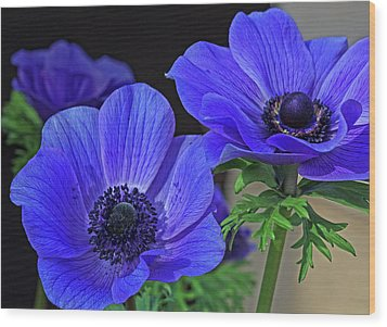 Wood Print featuring the photograph Twin Blue by Robert Pilkington