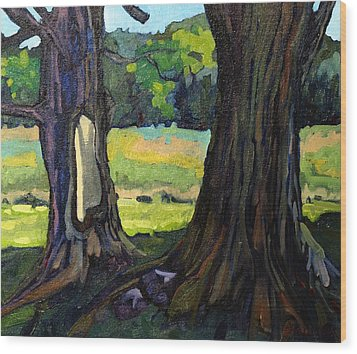 Twin Maples Wood Print by Phil Chadwick