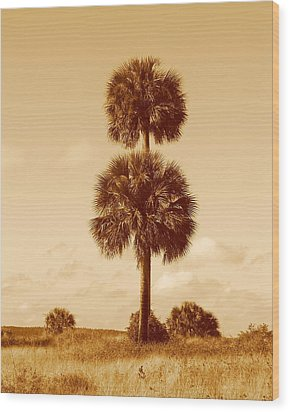 Wood Print featuring the photograph Twin Palms by Peg Urban