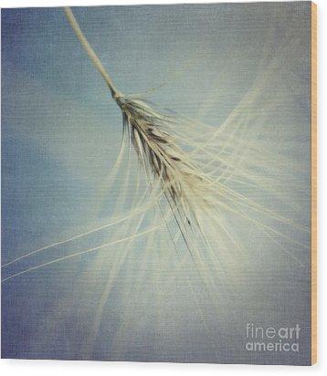 Twirling Wood Print by Priska Wettstein