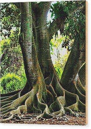 Twisted Wood Print by Tom Prendergast