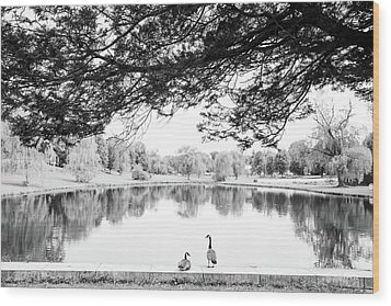Wood Print featuring the photograph Two At The Pond by Karol Livote