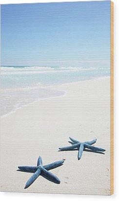 Two Blue Starfish On Tropical Beach Wood Print by Lulu