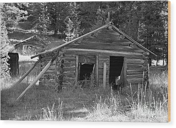 Two Cabins One Outhouse Wood Print by Richard Rizzo