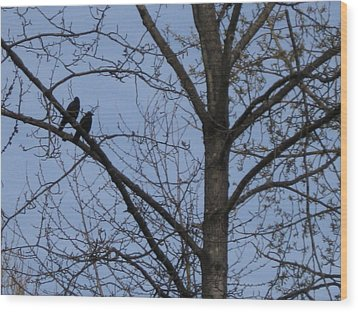 Wood Print featuring the photograph Two Crows by AJ Brown