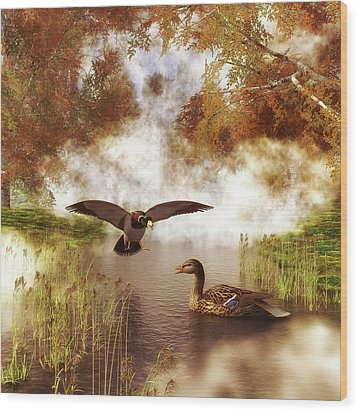 Two Ducks In A Pond Wood Print