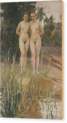 Two Friends  Wood Print by Anders Leonard Zorn