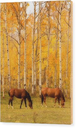 Two Horses In The Autumn Colors Wood Print by James BO  Insogna