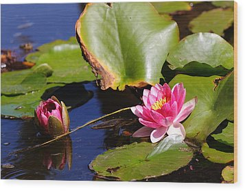 Wood Print featuring the photograph Two Lilies by Richard Patmore