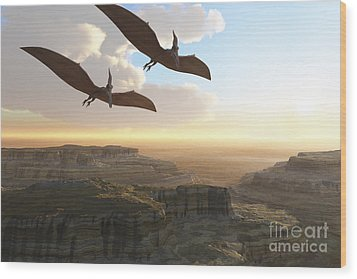 Two Pterodactyl Flying Dinosaurs Soar Wood Print by Corey Ford