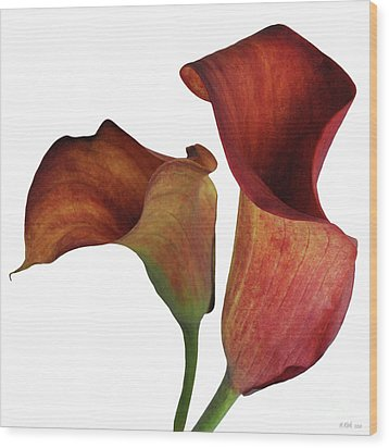 Two Rust Calla Lilies Square Wood Print