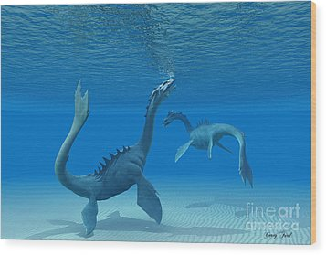 Two Sea Dragons Wood Print by Corey Ford
