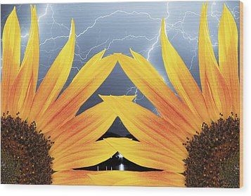 Two Sunflower Lightning Storm Wood Print by James BO  Insogna