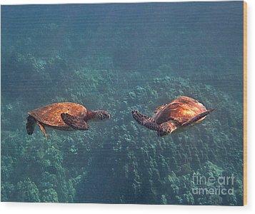 Two Turtle Tango Wood Print
