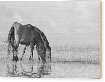 Wood Print featuring the photograph Two Wild Mustangs by Bob Decker